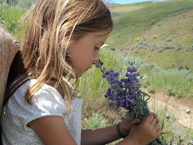 Calli enjoying the flowers at BoulderCrest Ranch