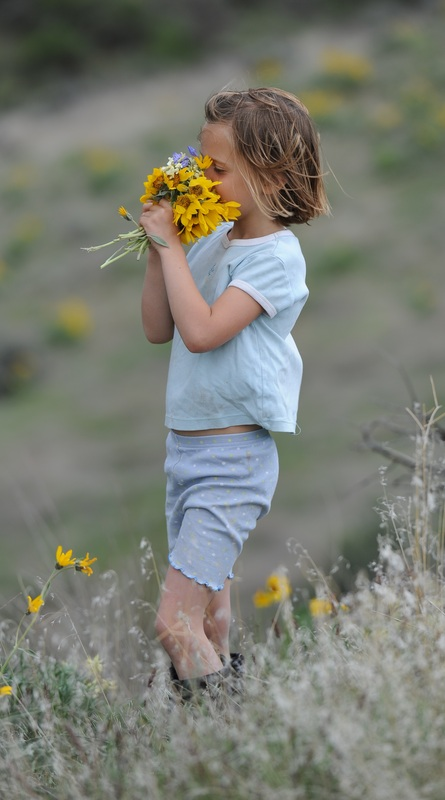 Calli with summer sunflowers at BoulderCrest Ranch